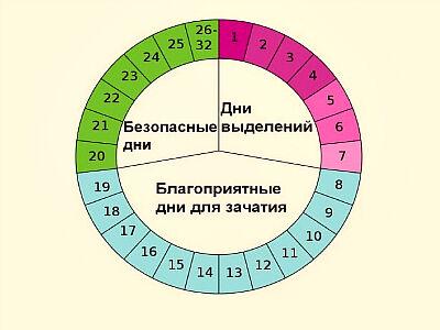 расчет дней овуляции