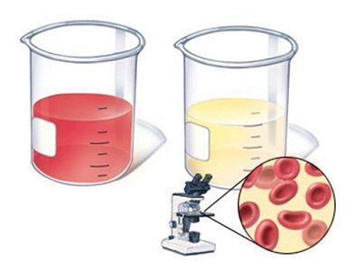 лейкоциты при беременности