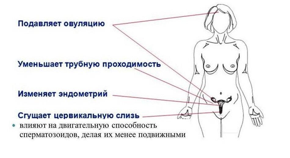 противозачаточные при беременности