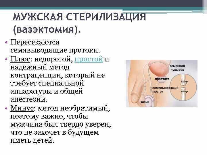 Методы контрацепции их преимущества и недостатки Выполнила Гостева