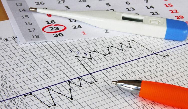 Зачем измерять базальную температуру – PROFI.RU — За профи говорят дела