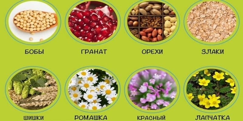 Продукты с фитоэстрогенами для женщин и травы
