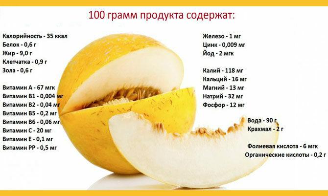 Содержание витаминов и минералов в дыне
