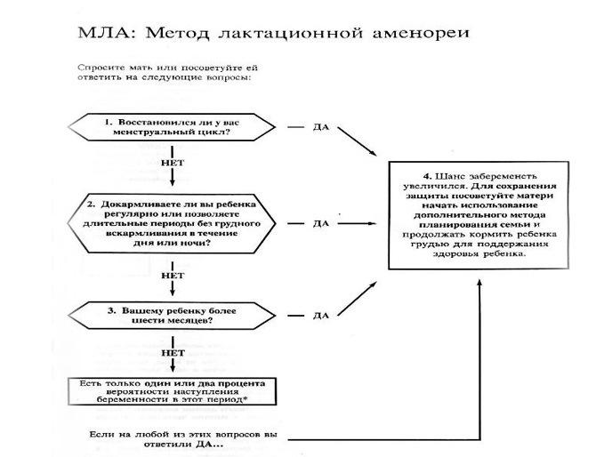 Метод лактационной аменореи