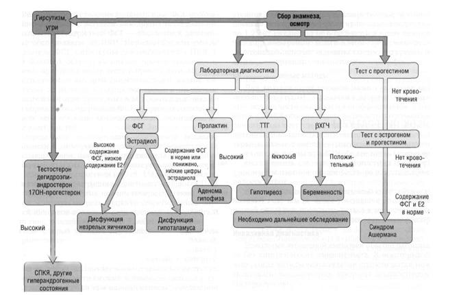 Анализ концентрации различных гормонов в крови при аменореи